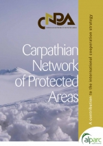 CNPA: A Contribution to International Cooperation Strategies